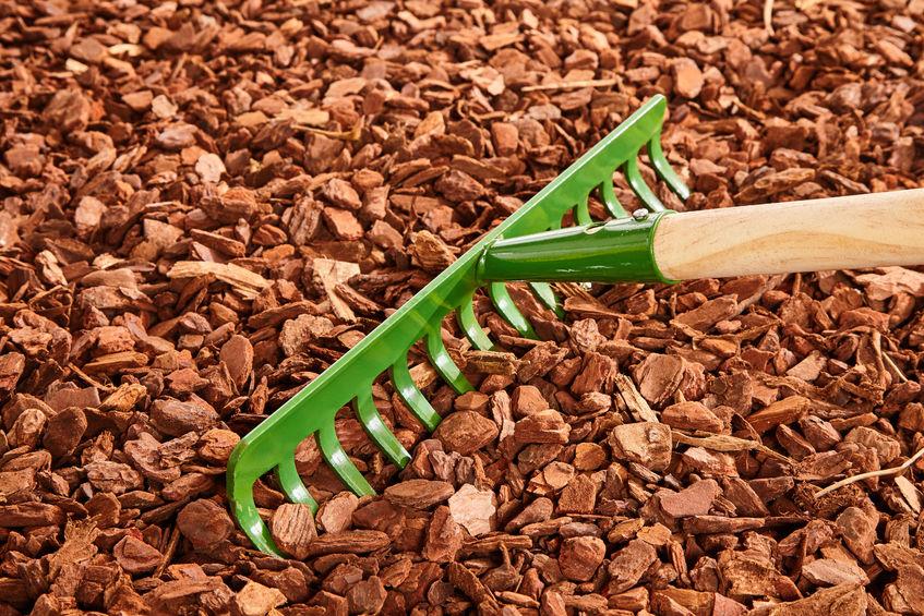 Miért jelent ideális megoldást a fenyőkéreg a kertben?