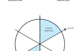Mi az a filogenetikus modell?