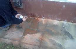 Szakszerű megoldás vizes falakra
