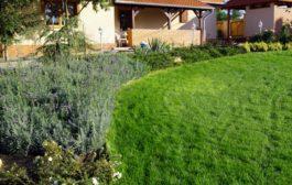 Különleges kertet szeretne?