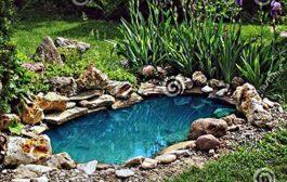 Ügyeljen kerti tava karbantartására!