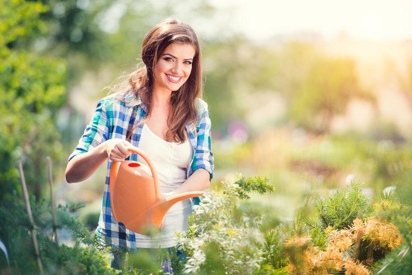 Gondos füvesítés, amely végeztével kertje még zöldebb lehet!