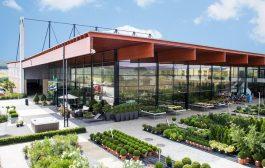 Irodaépülete köré szeretne nagy zöldterületet?