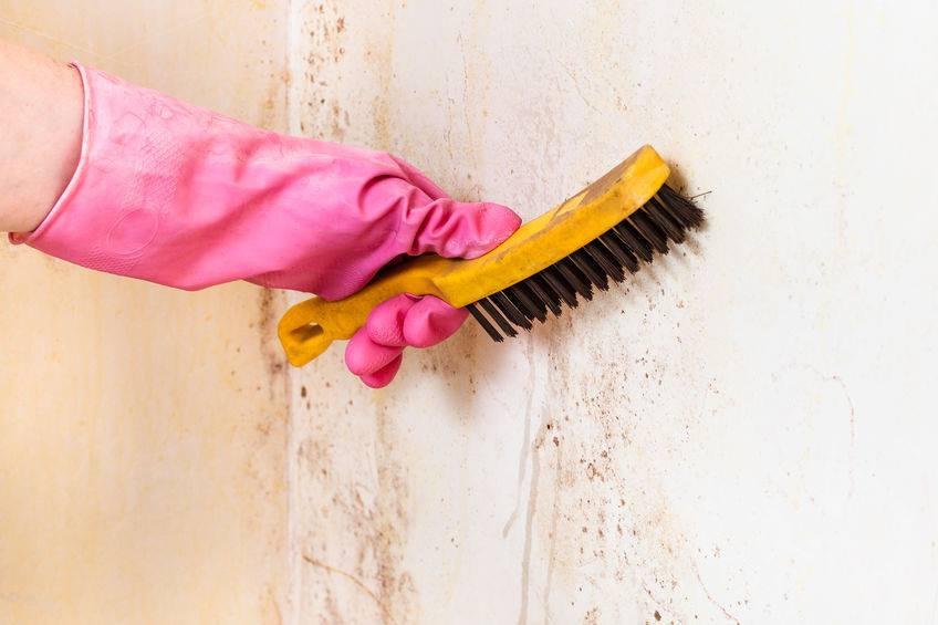 Kiváló higiéniai és tisztítószerek webáruházból